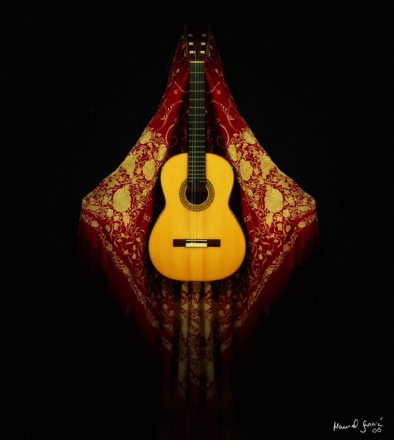 flamenco guitarra flamenca: